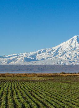 (Ru) Майская Армения