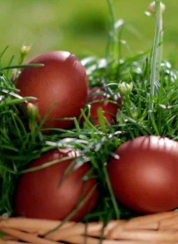 Easter in Armenia & Georgia