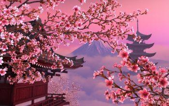(Am) Ճապոնիան կվճարի տուրիստներին